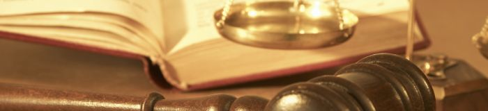 Image of a gavel and open book